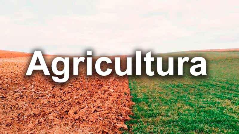 NDA 701 Analizador de Nitrógeno/Proteínas Dumas agricultura
